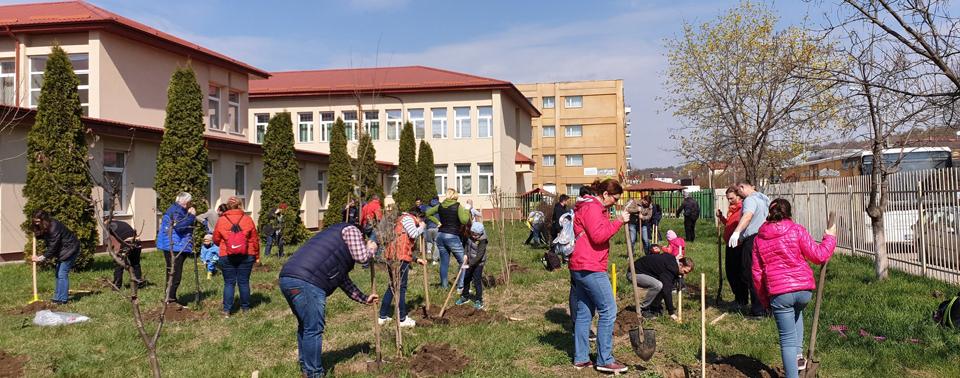 """""""Livada de la școală"""" a prins rădăcini în zece școli din județul Iași"""