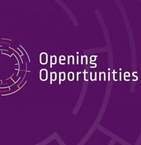 2000 de liceeni pasionați de IT din România construiesc aplicaţii mobile sau alte proiecte tehnice prin programul Opening Opportunities