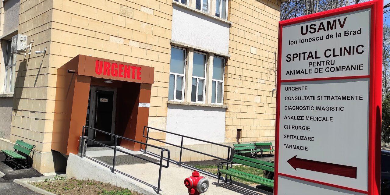 Multe cazuri tratate la spitalul veterinar al USAMV Iași în perioada Sărbătorilor Pascale