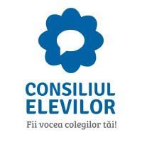 Consiliul Naţional al Elevilor organizează alegeri online pentru Biroul Executiv