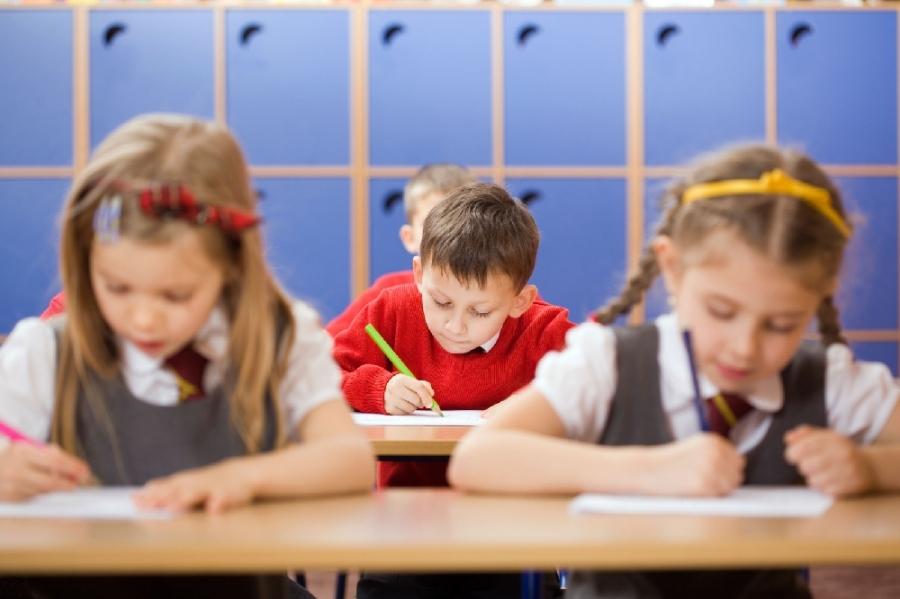 Organizaţii din domeniul educaţiei solicită fonduri în bugetul de stat pentru bursele minime ale elevilor