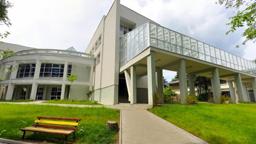 Universitatea Suceava va găzdui o competiţie internaţională de securitate cibernetică dedicată studenţilor