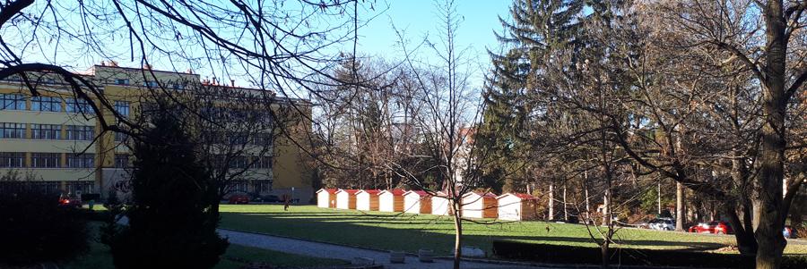 Târgul de Crăciun USAMV Cluj-Napoca va avea loc în perioada 10-14 decembrie